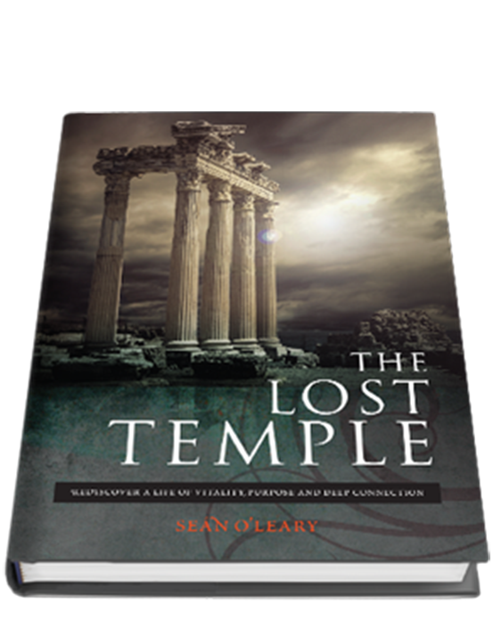 The Lost Temple eBook